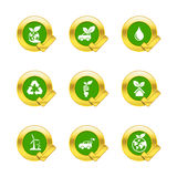 Gold circle and check mark with eco icons on white back. Ground vector illustration royalty free illustration