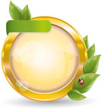 Gold circle frame with green leaf and ladybug Royalty Free Stock Image