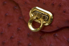 Gold Clasp on Ostrich Leather Royalty Free Stock Image