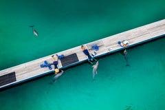GOLD COAST, AUSTRALIEN - 31. März 2015 Delphin in ihrem enclosur Stockfotografie