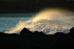 Gold Coast Beaches. Image taken of a nice wave at sunset time at burleigh headland on the gold coast australia Stock Photography