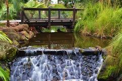 Gold Coast Botanical Gardens Stock Photos