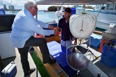 Gold Coast fiskares Co - Queensland Australien Arkivfoton