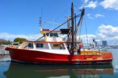 Gold Coast fiskares Co - Queensland Australien Royaltyfria Foton