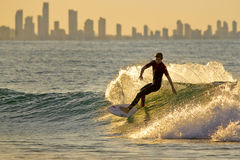 Gold Coast Sunset Surfer. Young surfer at sunset with the Gold Coast 's skyline in the background Royalty Free Stock Photography