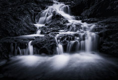 Gold Coast Waterfall Stock Images
