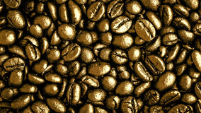 Gold coffee beans Royalty Free Stock Images