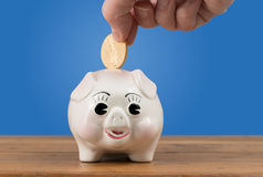 Gold coin being inserted into piggy bank Royalty Free Stock Photography