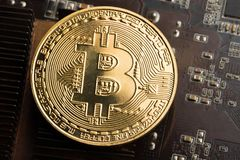 Gold coin bitcoin on the graphics card stock image