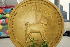 Gold coin of dog Stock Photos