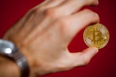 Bitcoin logo gold coin last bitcoin symbol stock photography