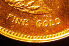 Gold Coin. Micro Photo of a Gold Coin Royalty Free Stock Images