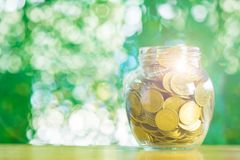 Gold coin money in the glass jar on table in garden with green b. Ackground, for saving for the future banking financial concept Royalty Free Stock Photos