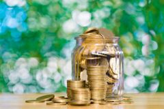 Gold coin money in the glass jar on table in garden with green b. Ackground, for saving for the future banking finance concept Stock Photos