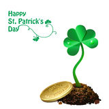 Gold coin on pile of soil and leaf clovers. Stock Photos