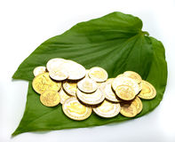 Gold coins on a betel leaf Royalty Free Stock Images
