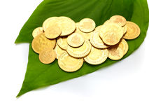 Gold coins on betel leaf Stock Photos