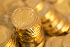 Gold coins. Heap of gold coins,coins Stock Images