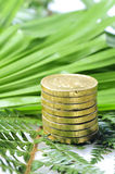 Gold coins in nature Stock Photo