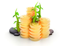 Gold  Coins and plant. 3d render of gold Royalty Free Stock Image