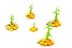 Gold  Coins and plant. 3d render of gold Stock Images
