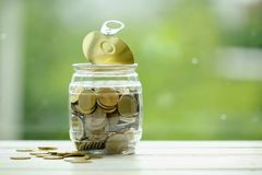 Gold coins in a plastic jar. Thailand currency. Economy and savi Stock Photos
