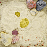 Gold coins in a scenery with sand. Gold coins lying in a scenery with sand and stones stock image