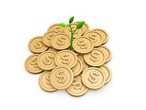 Gold coins and seedling Royalty Free Stock Photo