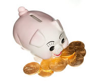 Gold coins surrounding pink piggy bank. Gold eagle coins surrounding a piggy bank and isolated against white royalty free stock photos