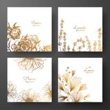 Gold collection of cards design with peonies, lavender, chamomile and leaves of ginkgo biloba. Template frame for birthday and gre. Eting card, wedding Stock Images