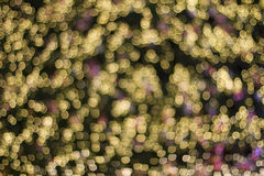Gold Color Blur Bokeh Royalty Free Stock Photo