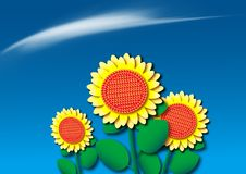 Gold color sunflower Royalty Free Stock Photos