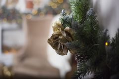 Gold cone on a green fir tree and a fireplace at a background royalty free stock photo