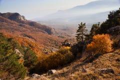 Gold Crimea. Stock Photo