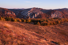 Gold Crimea. Royalty Free Stock Photography