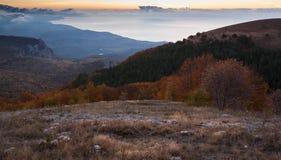 Gold Crimea. Stock Photos