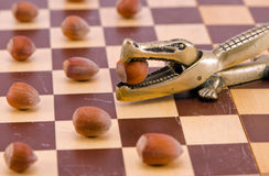 Gold crocodile nut crush tool on chess board Royalty Free Stock Image