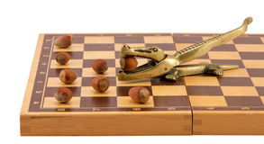 Gold crocodile nut crush tool chess board isolated Royalty Free Stock Photos