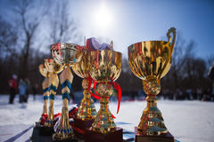 The gold Cup championship. Royalty Free Stock Images