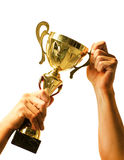 Gold cup in hands Royalty Free Stock Photography