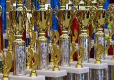 Gold Cup Trophies Stock Images