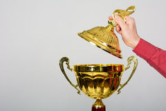 Gold Cup trophy for winning the Song Festival Royalty Free Stock Images