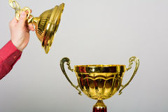 Gold Cup trophy for winning the Song Festival Stock Images