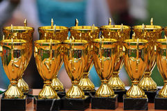 Gold cups Royalty Free Stock Photography