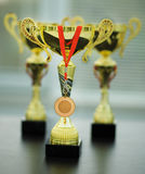 Gold cups with medal Royalty Free Stock Photography