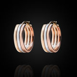Gold curcle earrings Royalty Free Stock Images