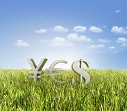 Gold currency symbols on the key. Gold currency symbols with the word yes on the grass ans sky Stock Images