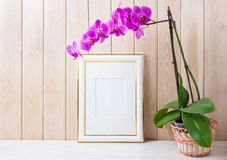 Gold decorated frame mockup with purple orchid in wicker basket. Gold decorated frame mockup with magenta-purple orchid in wicker basket near wooden wall. Empty royalty free stock photo