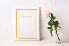 Gold decorated frame mockup with tender pink rose in glass Royalty Free Stock Images