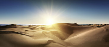 Gold desert into the sunset. Royalty Free Stock Photography